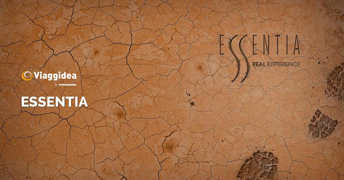 Catalogo Essentia