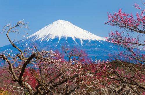 Monte fuji - Escursione Monte Fuji Hakone