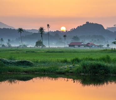 Malesia - campagna