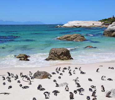 bouders beach sudafrica