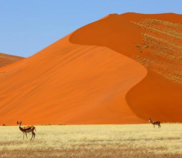 Sabbie della Namibia